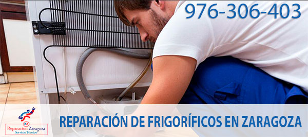 Reparar frigoríficos en Zaragoza